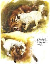 Jack Russell Terrier - Vintage Dog Print - Poortvliet