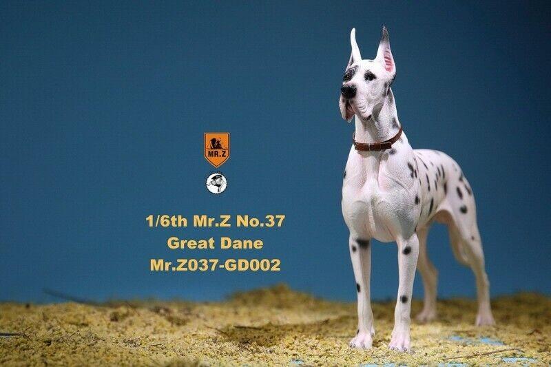 1 6 Mr. Z modelo animal Bomba de 37th MRZ037 GD002 alemán Gran danés Perro Mascota Figura