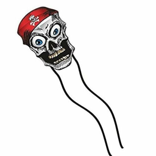 Handle +Quick Clip RipStop Nylon Tails Line Delta Kids Kite Wiggle Skull