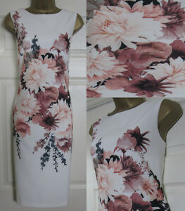 NEW-M-amp-Co-Floral-Print-Scuba-Bodycon-Shift-Dress-Midi-Occasion-Ivory-Pink-8-20