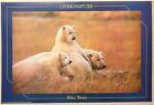 (PRL) 1989 LIVING NATURE POLAR BEARS ORSI POLARI VINTAGE AFFICHE POSTER PRINT