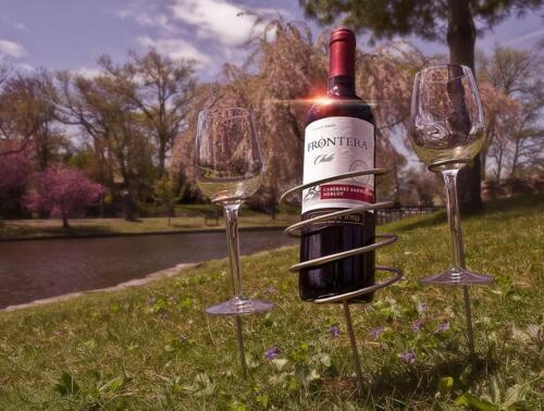 Zatiki Wine Stakes Set Wine Sticks Set Of 3