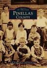 Pinellas County by A M De Quesada Jr, Vincent Luisi (Paperback / softback, 1998)