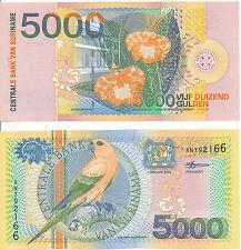 Suriname - 5000 Gulden 2000 UNC - Pick 152