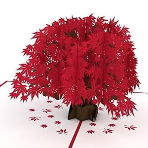 Japanese-Maple-3D-Pop-Up-Card-Anniversary-Greeting-Birthday-Wedding-Mother-Day