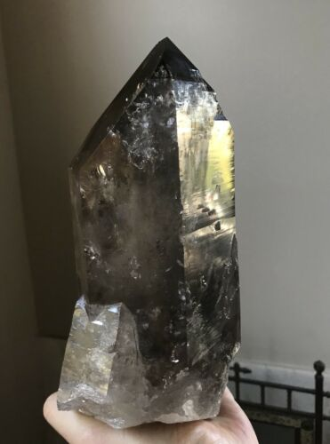 6+LB Smoky Quartz Morion Quartz Record Keeper Quartz Crystal Point Brazil