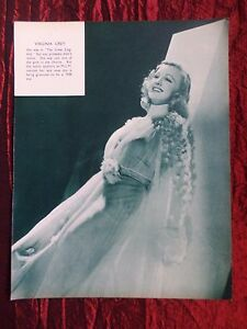 """VIRGINIA GREY - FILM STAR - 1 PAGE PICTURE -"""" CLIPPING / CUTTING""""- #2"""