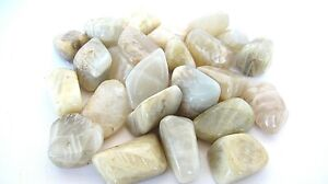 Moonstone-Tumbled-Stones-Qty6-25-30mm-Reiki-Healing-Crystals-by-Cisco-Traders
