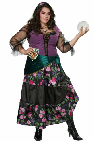 Mystical Charmer Gypsy Fortune Teller Plus Size Costume