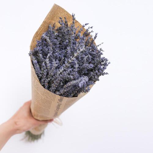 Getrocknete Blume beste Geschenk Pflanze Gras Dekor künstliche Blume