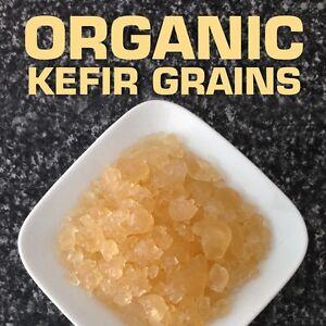 Water-Kefir-Grains-PREMIUM-QUALITY-Organic-probiotic-culture-2-tbs-BPA-Free