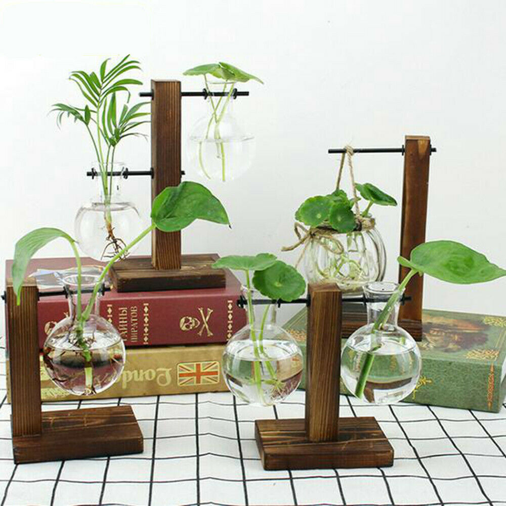 Glass Bulb Vase Plant Stand Flower Pot Metal Holder,Office Desktop Home /& Office Decor Handmade Round Bird-1 Pot