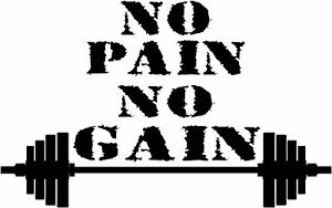Motivational Vinyl Decal No Pain No Gain Gym Quote Sticker Trainning