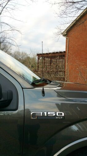 "15/"" Black Spring Stainless AM//FM Antenna Mast Fits 1982-1994 Pontiac Sunbird"