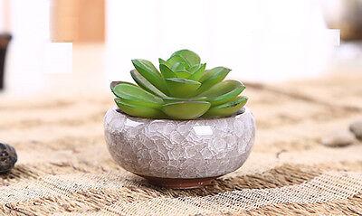 ceramic plant pots planters pottery clay bonsai pots desktop decor NEW
