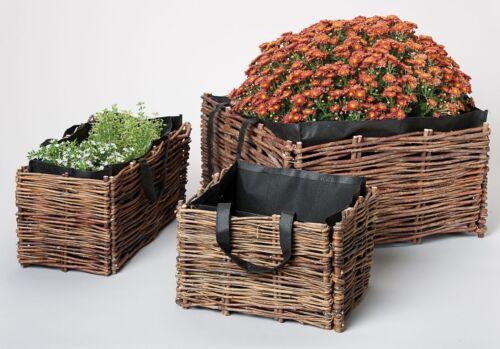Weidenbeet Weide Pflanztopf Pflanzgefäß 50x20x20cm mit Pflanztasche