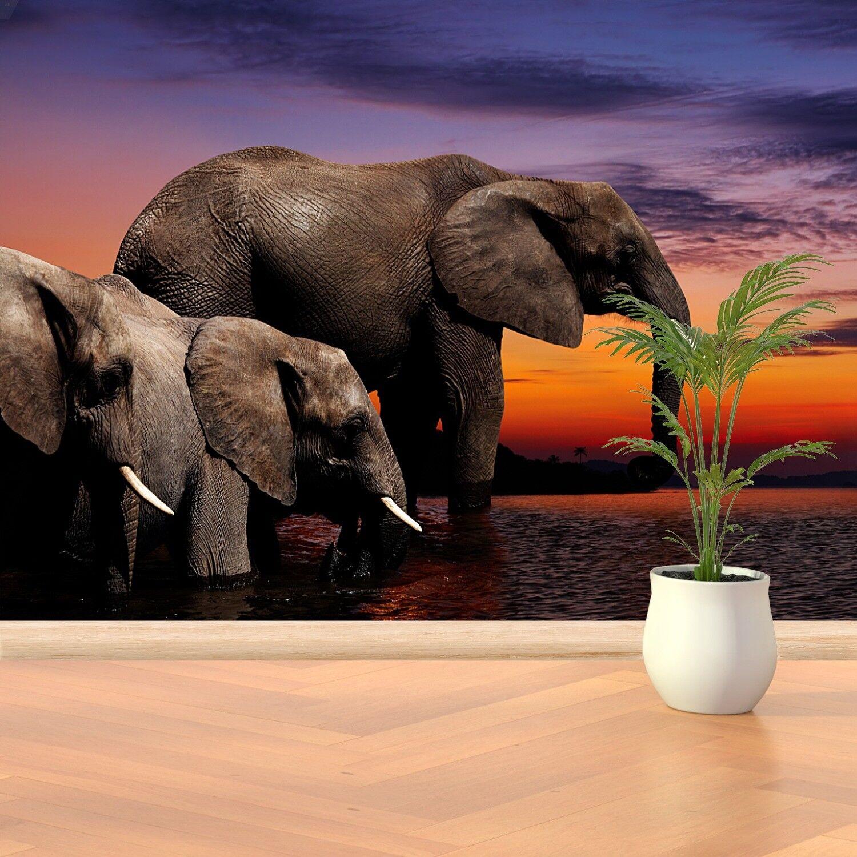 Papier-Fototapete Fototapeten Tapete aus Papier Poster Foto Elefanten