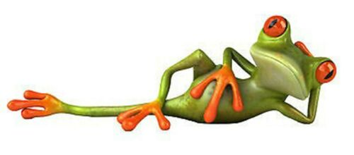 Sticker animal grenouille tranquille 28x10cm
