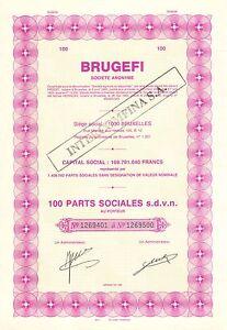 BRUGEFI-SA-cert-100-acciones-1985-constituee-Societe-Agricole-du-Mayumbe