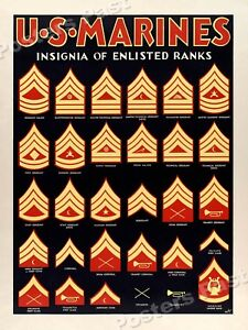 1940s Insignia of Enlisted Ranks WWII Marine Corps War ...
