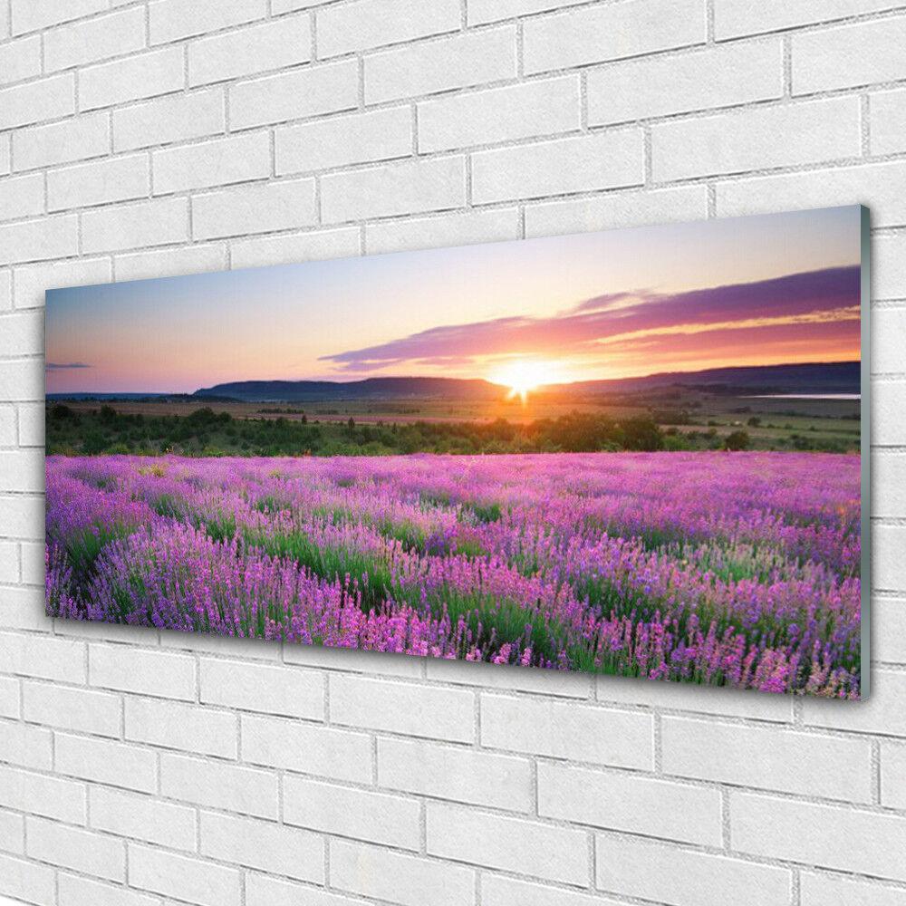 Impression sur verre Image tableaux 125x50 Nature Prairie Fleurs Soleil
