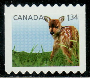 Canada-2606ii-Baby-Wildlife-Definitive-From-Coil-Die-Cut-MNH