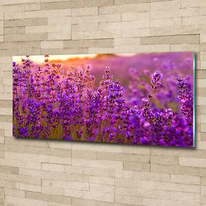 Wandbild-aus-Plexiglas-Druck-auf-Acryl-125x50-Blumen-amp-Pflanzen-Lavendelfeld