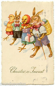 LAPINS-ET-POUSSINS-HUMANISeS-PAQUES-HUMANIZED-RABBITS-AND-CHICKS-EASTER
