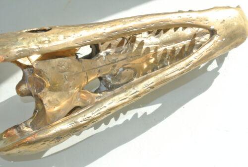 Amazing small Crocodile skull solid pure brass heavy decor hand made 23 cm B
