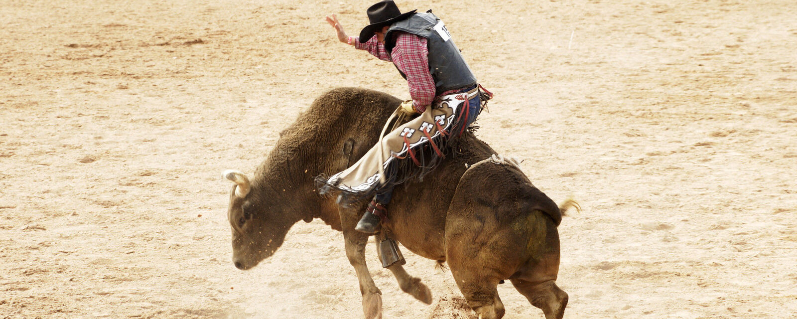 Worlds Toughest Rodeo