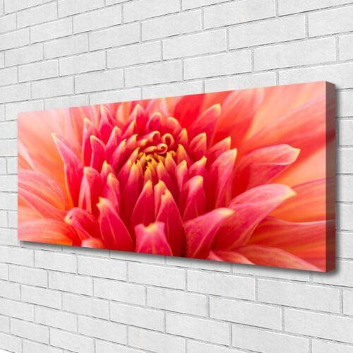 Leinwand-Bilder Wandbild Canvas Kunstdruck 125x50 Blume Pflanzen