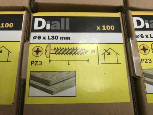 6 x 100 Pack diall 6 x L30 mm PZ3 Qualité Premium en acier vis à bois