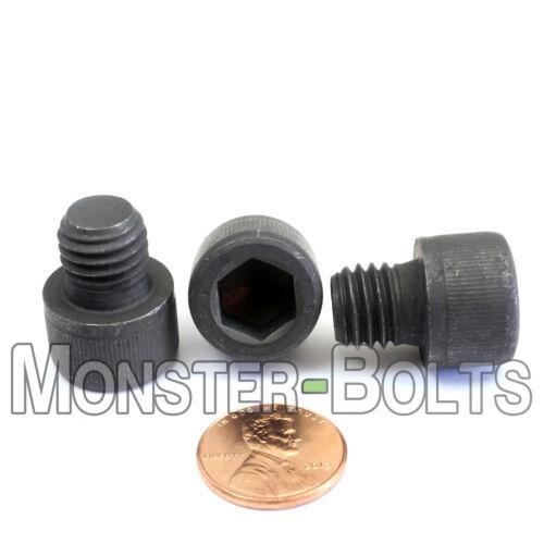 M12-1.75 x 12mm Socket Head Caps Screws 12.9 Alloy Steel Blk Oxide 12mm 10