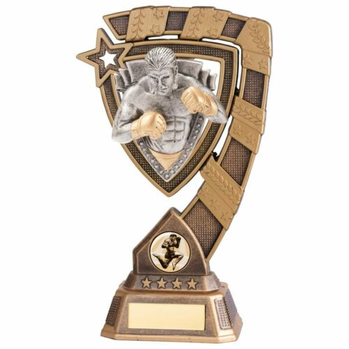 Martial Arts Trophies Euphoria MMA Fighter Trophy 4 sizes FREE Engraving