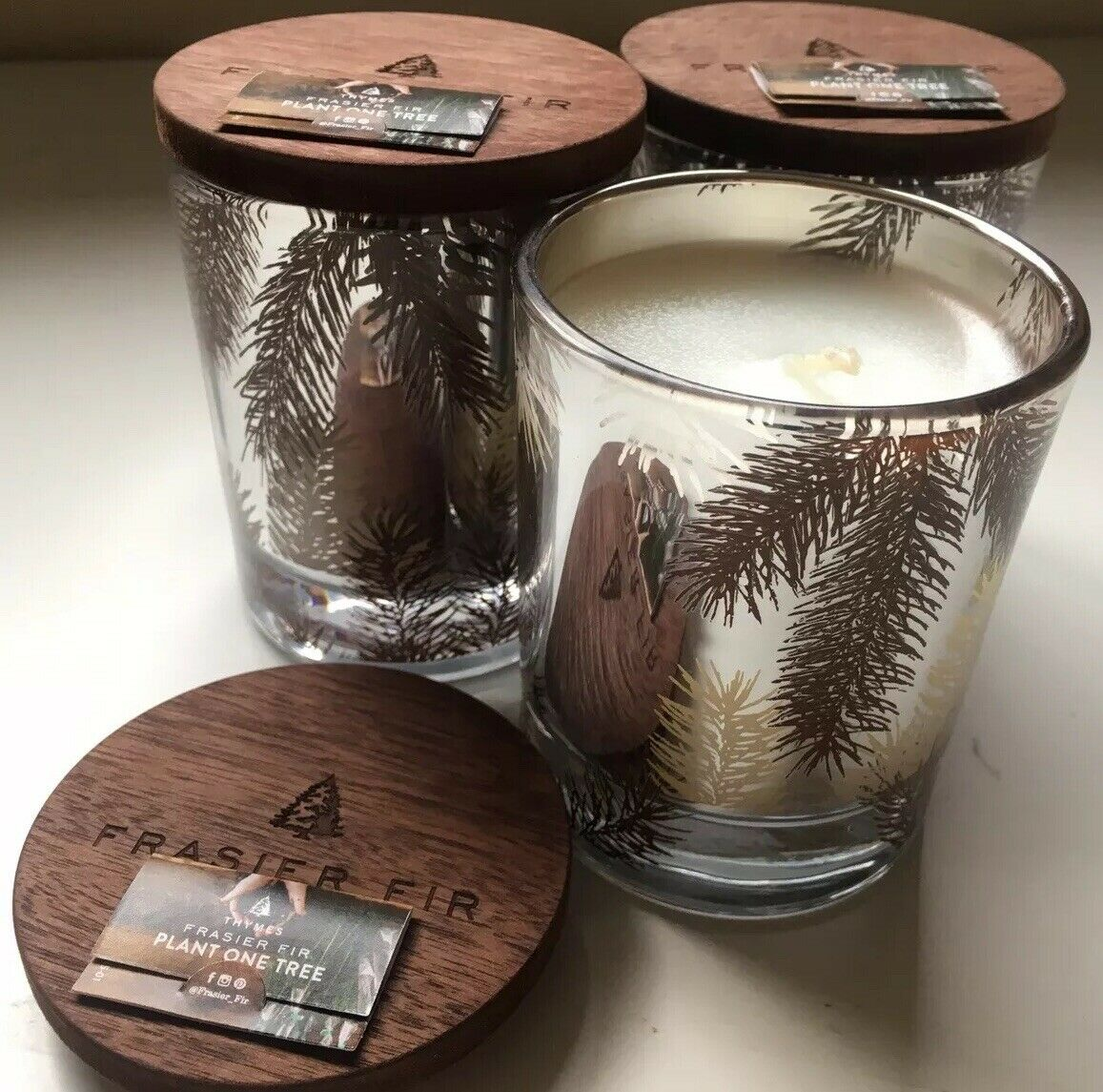 NEW THYMES 3X LOT FRASIER FIR STATEMENT PINE NEEDLE CANDLE 5 OZ