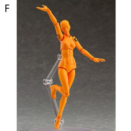He//She Figure Ferrite Action Play Arts Kai Anime Model Drawing Figma Kids Toy