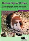 The Guinea Pig by Landmark Education Supplies Pty Ltd (Paperback, 2007)