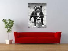 STAFFORDSHIRE BULL TERRIER STAFFIE DOG COOL GIANT ART PRINT PANEL POSTER NOR0020
