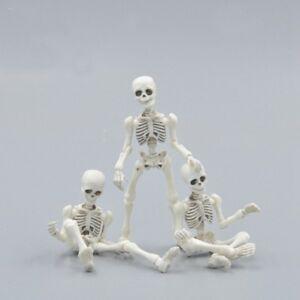 Acerca Cráneo Flexible Cuerpo Detalles Muñeco Regalo Juguete Humano Mostrar Decoración De Pose Original Hogar Modelo Título Esqueleto cKJTlF13