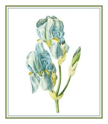 Botanical Redoute/'s Lady Slipper Orchid Flower Counted Cross Stitch Pattern