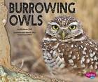 Burrowing Owls by Melissa Hill (Paperback / softback, 2016)