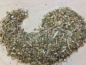 Wild LATTUGA, Lactuca virosa, Foglia pesanti (USDA Organico) ~ schmerbals Erbe