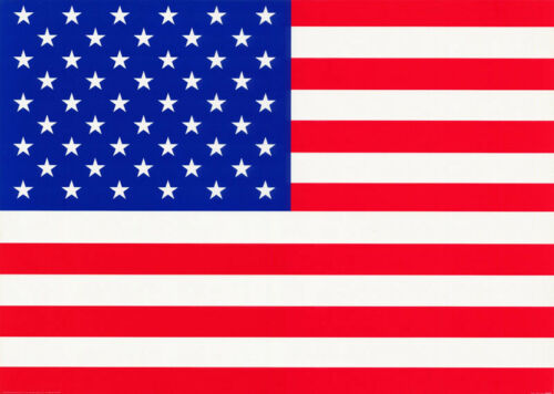 #PP0307      RP74 U ART FREE SHIPPING USA FLAG POSTER