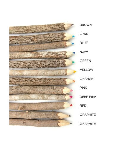 Assorted-Stick Twig Colored Outdoor Wooden Pencils Tree Child Camping Decorat...