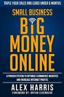 Small Business Big Money Online: A Proven System to Optimize Ecommerce Websites and Increase Internet Profits by Alex Harris (Paperback / softback, 2015)