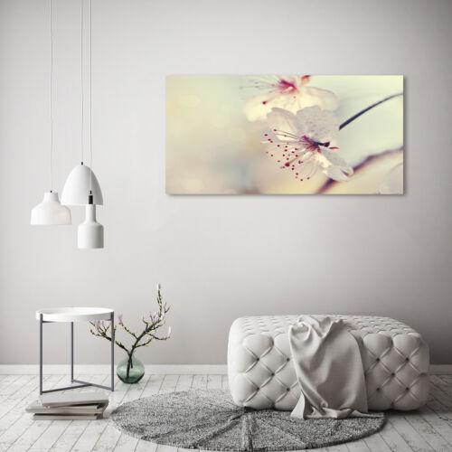 Glas-Bild Wandbilder Druck auf Glas 120x60 Deko Blumen /& Pflanzen Kirschblüte