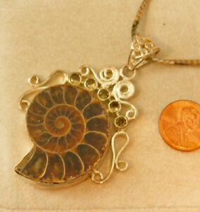 Nautilus-Shell-Ammonite-Fossil-Sterling-Silver-Slide-Pendant-Necklace-5j-23