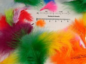 Huge-Lot-of-150-200-Assorted-Mix-of-Bright-Colored-Marabou-Turkey-Feathers