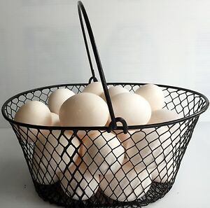 WIRE-CHICKEN-EGG-BASKET-FOR-GATHERING-EGGS-POULTRY-Oval-Black