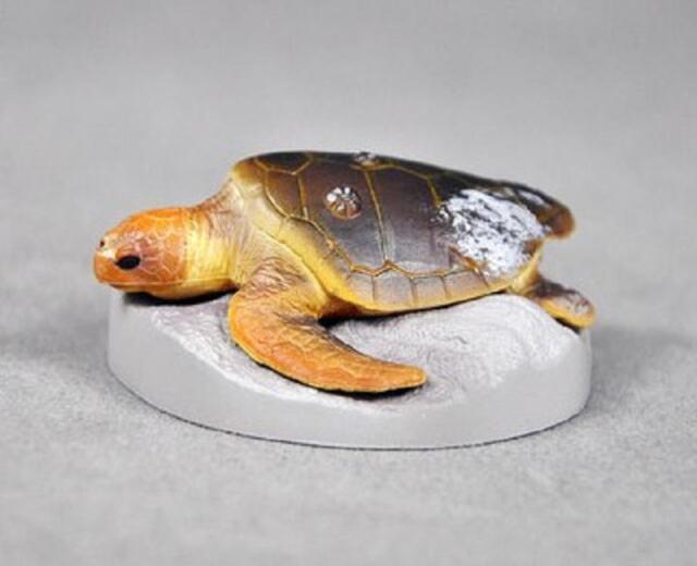 Kaiyodo Yujin Toba Aquarium Japan Exclusive Green Sea Turtle Figure Rare!